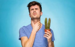 Болит горло без повышения температуры тела