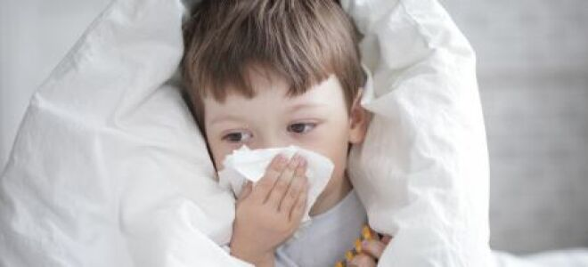 Заболевание ларингит: симптомы и лечение у детей