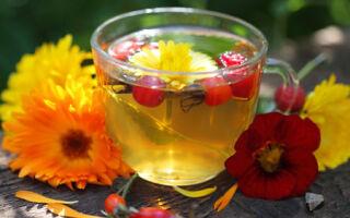 Гипотиреоз: лечение народными средствами, рецепты приготовления