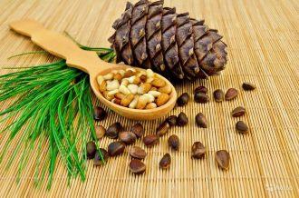 лечение кедровыми орехами